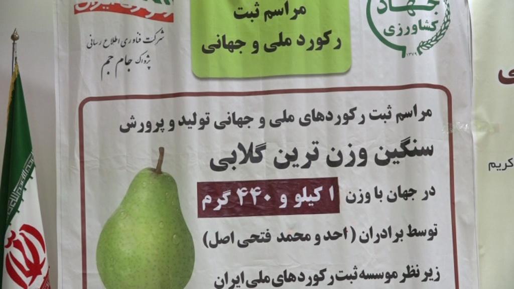 رکورد محمد واحد فتحی اصل